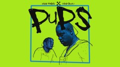 Pups (Audio)