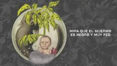 El Muermo (Lyric Video) - Ninõ de Elche