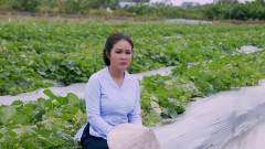 Duyên Phận - NSUT Lê Hồng Thắm
