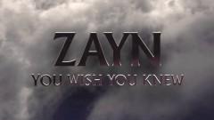 You Wish You Knew (Audio) - ZAYN