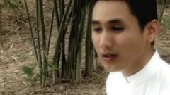 Lá Sầu Riêng