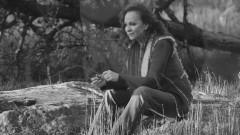 Just Like Them Horses - Reba Mcentire
