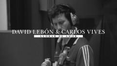 Llorar de Amor (Official Video)