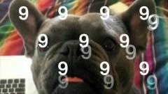 9 (After Coachella) (Lyric Video) - Cashmere Cat, MØ, Sophie