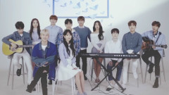 Butterfly (Dingo Live) - Starship Planet