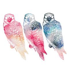 Mindfullness - Flyying Colours
