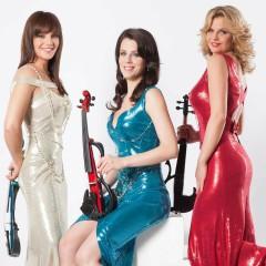 Princesses Of Violin