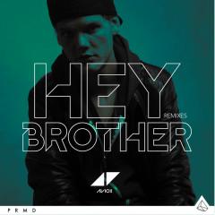 Hey Brother (Remixes) - Single - Avicii