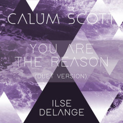 You Are The Reason (Duet Version) - Calum Scott, Ilse DeLange