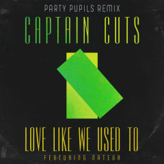 Love Like We Used To (Party Pupils Remix)