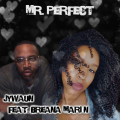 Mr. Perfect (Single) - Jywaun