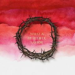 What a Beautiful Savior