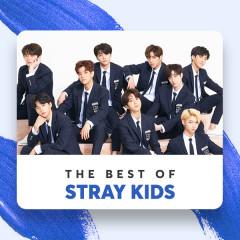 Những Bài Hát Hay Nhất Của Stray Kids - Stray Kids