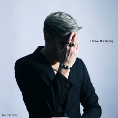 I Know It's Wrong (Single)