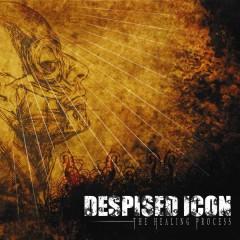 The Healing Process - Despised Icon