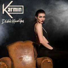 Didn't Know You - Karmin