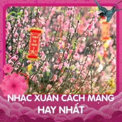 Nhạc Xuân Cách Mạng Hay Nhất - Various Artists