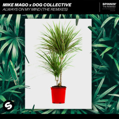 Always On My Mind (The Remixes) - Mike Mago, Dog Collective