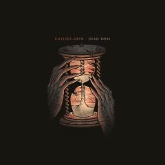 Dead Rose (Single)