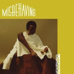 Misbehaving - Labrinth