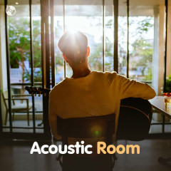 Acoustic Room - Various Artists