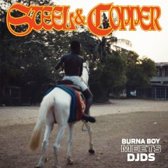 Steel & Copper (EP) - Burna Boy