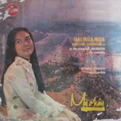 Hai Mùa Mưa (Tân Cổ) - Various Artists