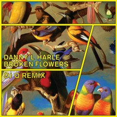 Broken Flowers (DJ Q Remix) - Danny L Harle
