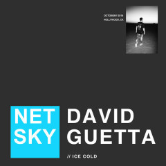 Ice Cold (Single) - Netsky, David Guetta
