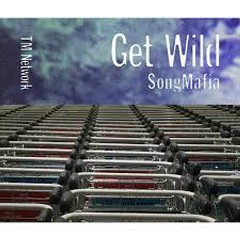 Get Wild Song Mafia CD4 - TM Network