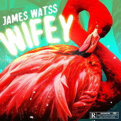 Wifey (Single) - James Watss