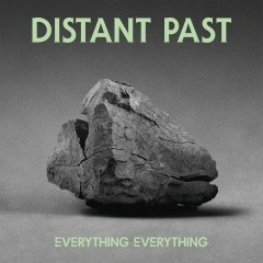 Distant Past (Alex Metric Remix) - Everything Everything