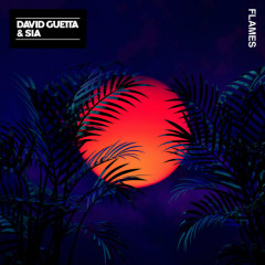 Flames (Single) - David Guetta, Sia