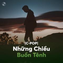 Nhạc Hoa Những Chiều Buồn Tênh - Various Artists