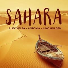 Sahara (Single)
