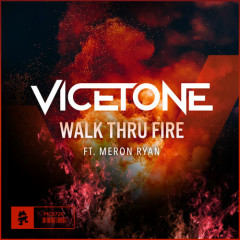 Walk Thru Fire (Single) - Vicetone