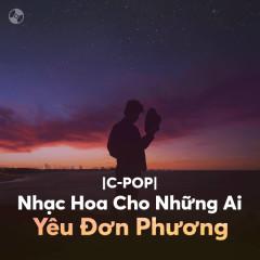 Nhạc Hoa Cho Những Ai Yêu Đơn Phương - Various Artists