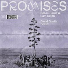 Promises (David Guetta Extended Remix) - Calvin Harris, Sam Smith