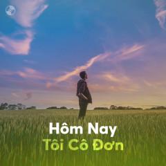 Hôm Nay Tôi Cô Đơn - Various Artists
