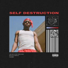 Self Destruction (Single) - Boogie