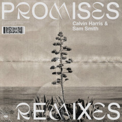Promises (Remixes) - Calvin Harris, Sam Smith