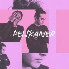 Pelikaner (med Arif)