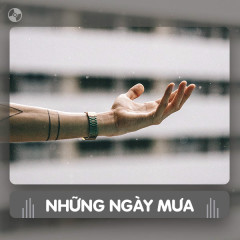 Thay Lời Muốn Nói: Những Ngày Mưa - Various Artists