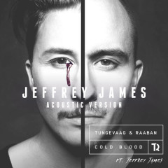 Cold Blood (Jeffrey James Acoustic Version) - Tungevaag & Raaban, Jeffrey James