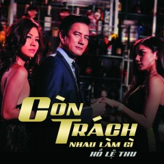 Còn Trách Nhau Làm Gì (Single) - Hồ Lệ Thu