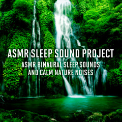 ASMR Binaural Sleep Sounds and Calm Nature Noises