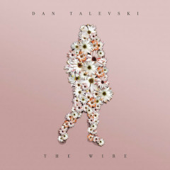 The Wire (Single) - Dan Talevski