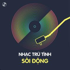 Nhạc Trữ Tình Sôi Động - Various Artists