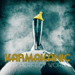 In a Perfect World - Karmakanic