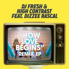 How Love Begins (Remixes) - EP - DJ Fresh,High Contrast,Dizzee Rascal